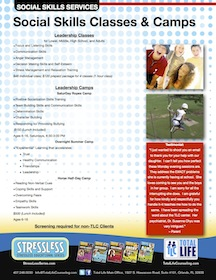 Social Skills Leadership Horse Day Camps and Therapy Counseling Orlando FL