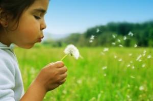 Child blowing bloom