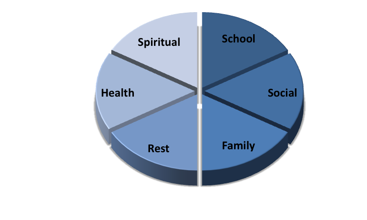 Pie Chart Balanced Total Life Counseling For Children Teens