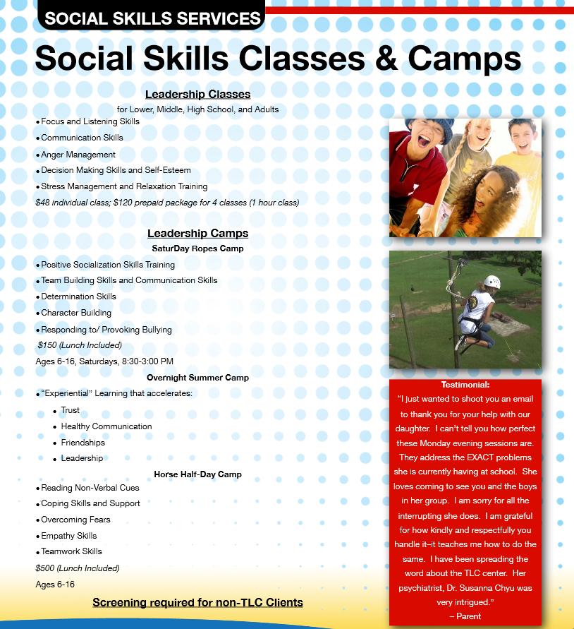 Social Skills Flyer